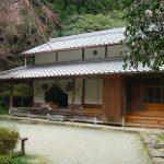 寺ヨガ 奈良|奈良のお寺でヨガしませんか?選べる2つのお寺